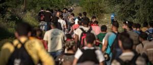 article-refugies